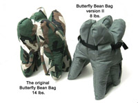 the Butterfly Bean Bag